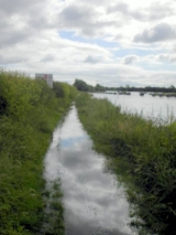 <h5>Flooded towpath</h5>