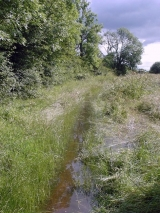 <h5>Flooded foot path</h5><p>This path runs along the northern boundary of the proposed development site</p>